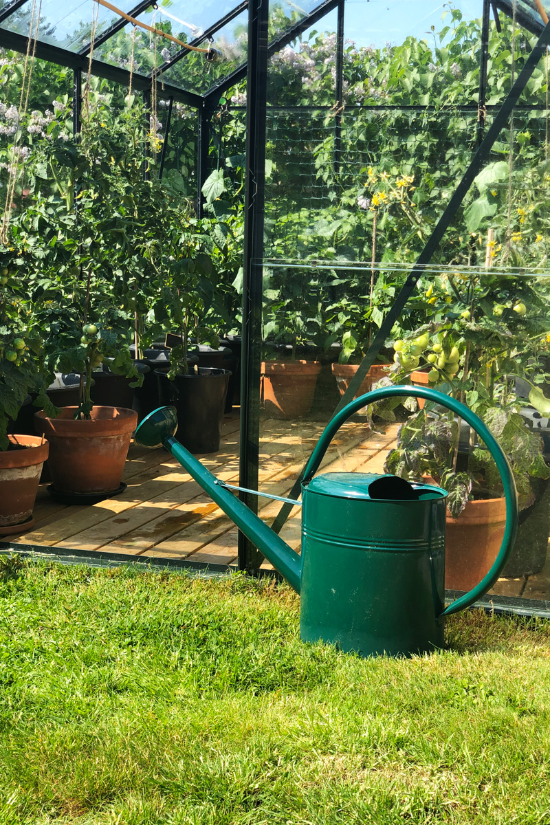 Emelies växthus fyllt med krukor och en vattenkana i förgrunden.